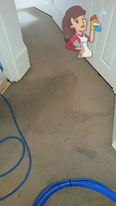 Chicago Carpet Cleaning Services