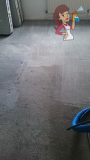 Steam Cleaning Services in Chicago